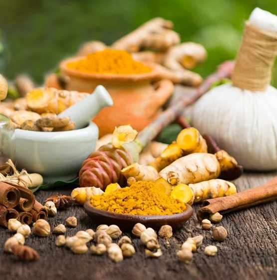 Ayurveda Counsellor Training Course - Level 1